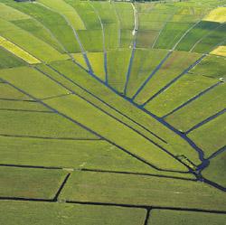Polder de Ronde Hoep met karakteristiek stervormig kavelpatroon.